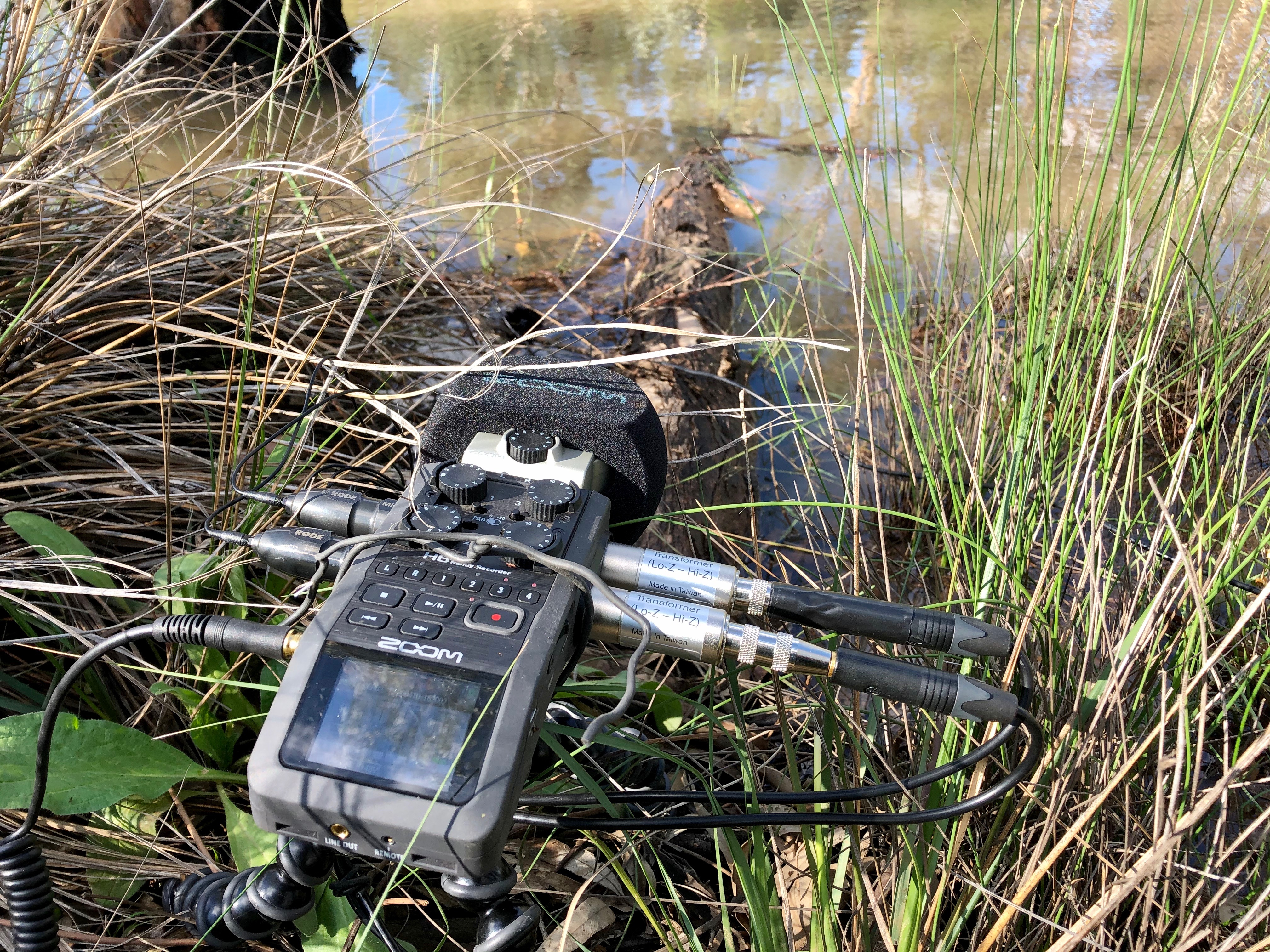 ZOOM H6 with lav mics and hydrophones