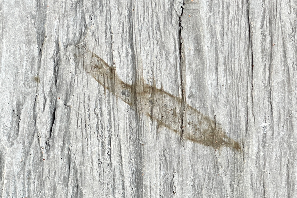Kim V. Goldsmith, photograph of a red gum leaf stain on concrete boardwalk, Burrima, February 2021