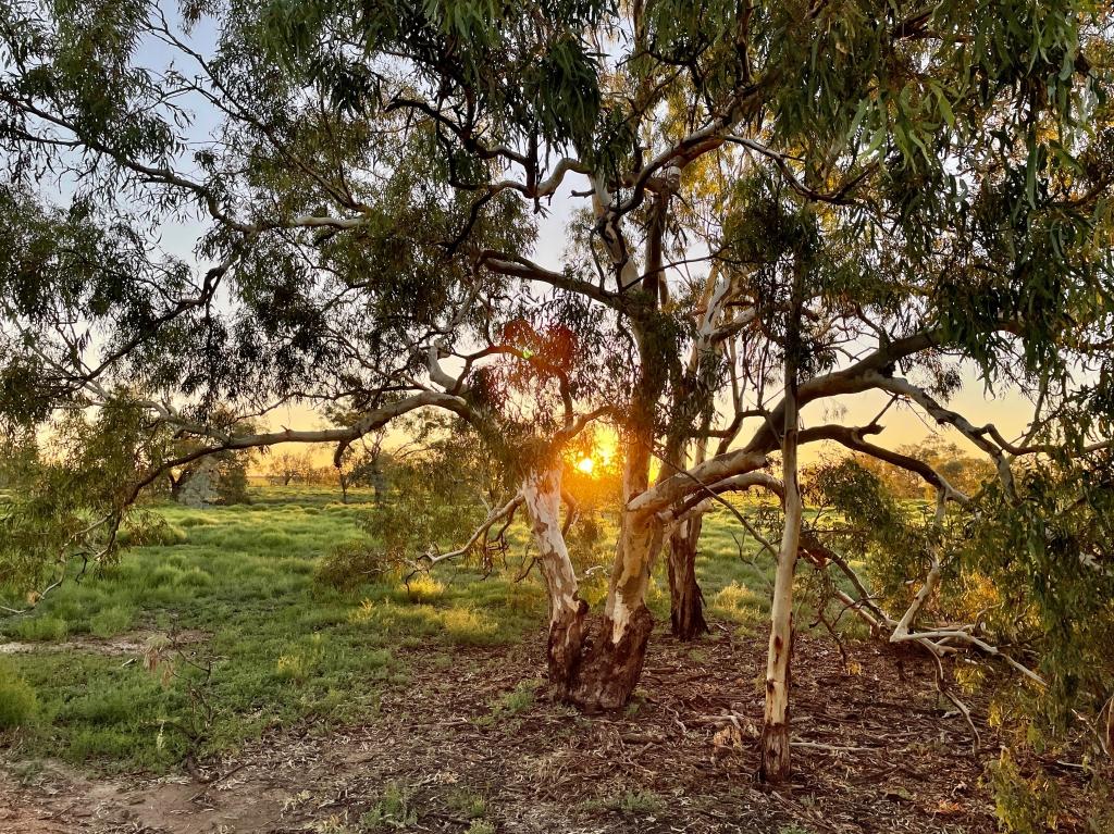 Sunset over the Marshes floodplain